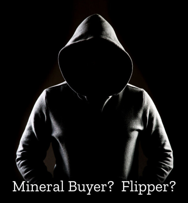 Mineral rights buyer or flipper?